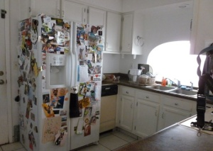 cluttered refrigerator 1